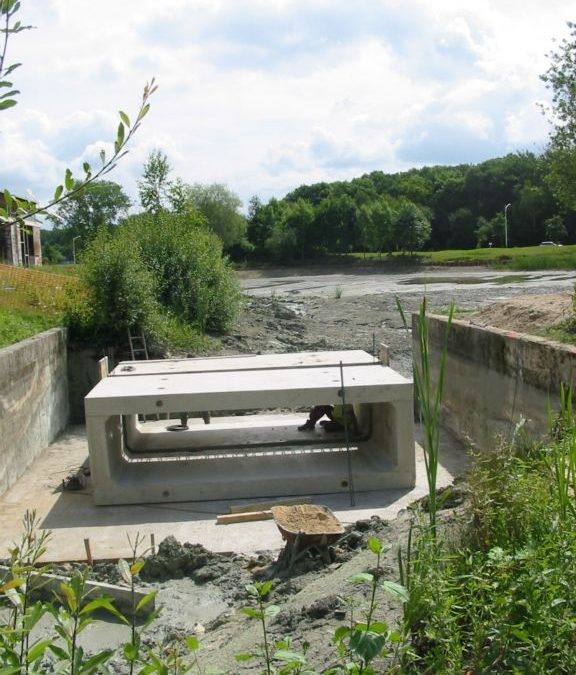JUIN 2016 : SAN Val d'Europe (77) – Descente primaire en eau potable et assainissement de village nature